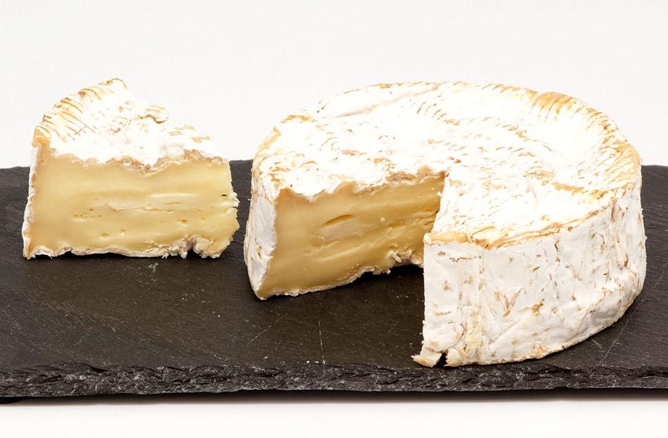 Tu queso favorito está en peligro de extinción