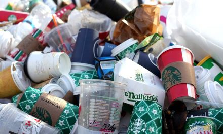 La unión europea prohibe los plásticos de un solo uso para el 2021