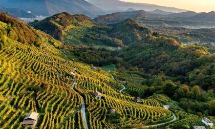 Nuevo patrimonio de la humanidad: las colinas del Prosecco