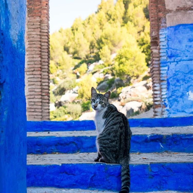 Viajar a Marruecos, chefchaouen