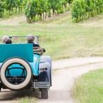 Road trips de viñedos: el viaje ideal