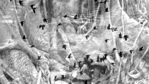 exposicao-reune-obras-inspiradas-pelo-primeiro-livro-de-jorge-amado-02
