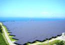 Energia solar pode gerar 11,6 mi de empregos no mundo