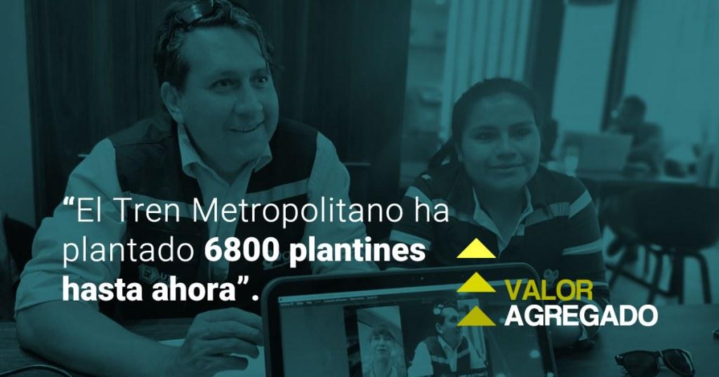 «El Tren Metropolitano ha plantado 6800 plantines hasta ahora».