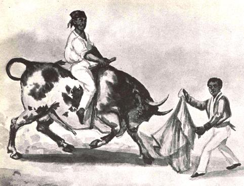 Toros y toreros.