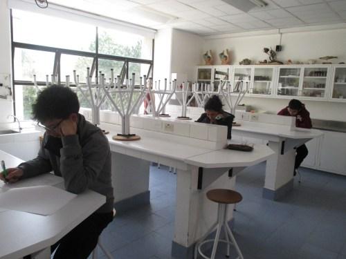 Los tres finalistas han realizado la prueba eliminatoria en el laboratorio de Ciencias