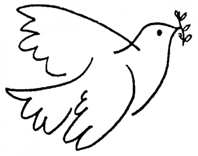 paloma-de-la-paz-830x654