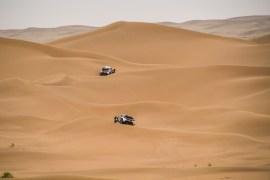 Os Peugeot de Despres e Peterhansel