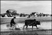 Vietnam, 1954. Convoy militar francés y sembrado de arroz en el camino de Namdinh a Thaibinh. Magnum Photos.