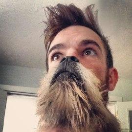 Los mejores Perros y Gatos Barba de la red
