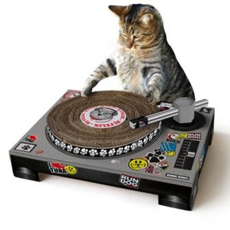 Rascadores divertidos para Gatos