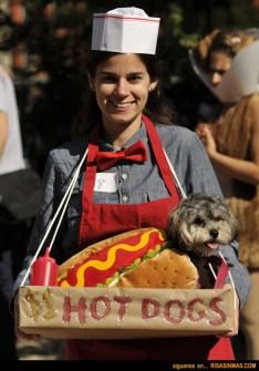 Disfraces para Mascotas en Halloween - Disfraz de Hot Dog
