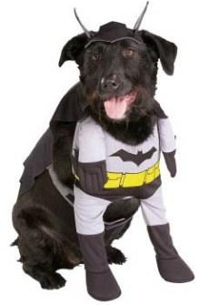 Disfraces para Mascotas en Halloween - Disfraz de Batman para perros