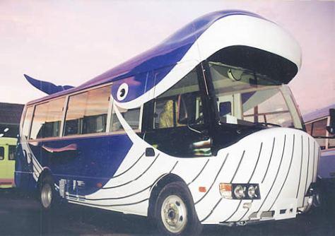 Autobuses Escolares en Japón - Ballena