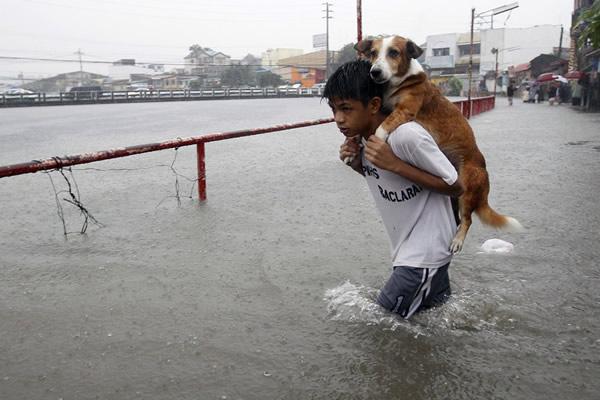 Las Imágenes más Sobrecogedoras de 2013 - Un niño salvando a su perro en las inundaciones en Manila, Filipinas.