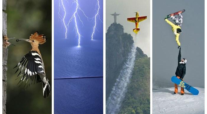19 Fotos Increíbles Capturadas en el Momento Justo.