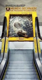 Campañas Publicitarias que Llamarán tu Atención - National Geographic
