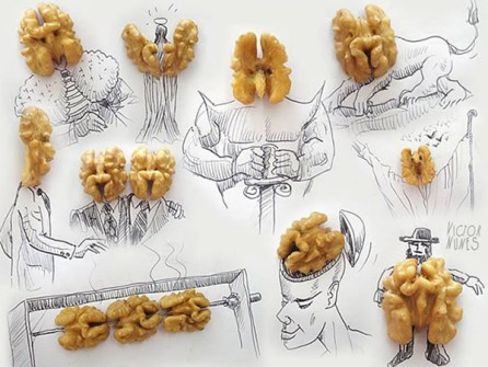 Ilustraciones en 3D que están a tu alcance - Nueces