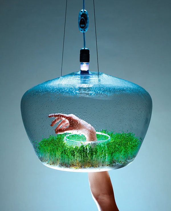 Lámpara Ecosistema