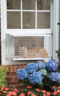 Mirador de gatos