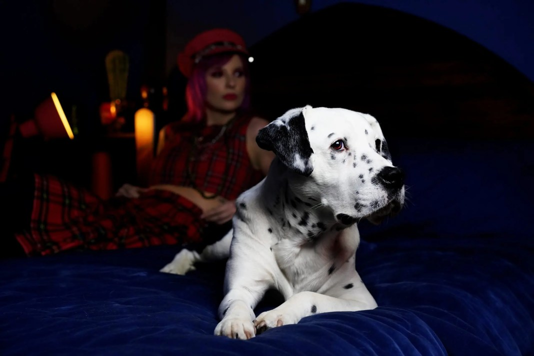 dog and lady on a bed