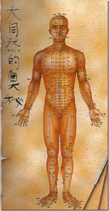 Meridianos da acupuntura,contra-indicações da automassagem.
