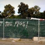 """Off The Pigs"""