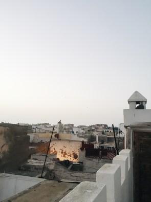 Fotoalbum: Essaouira