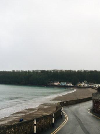 Winter in Wales: Dale