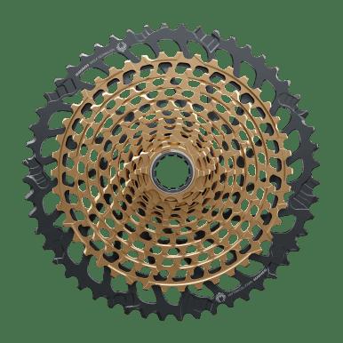 CS-XG-1299-B1_c_Gold_Side