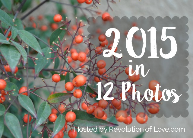 RevolutionofLove.com - 2015 in 12 Photos // logo_end_year_2015A3