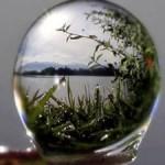 Illustration du profil de Danick MetaLuna