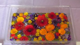 innovative display idea: flower heads floating on water