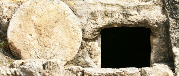 Resurrection & New Life: The Why Question