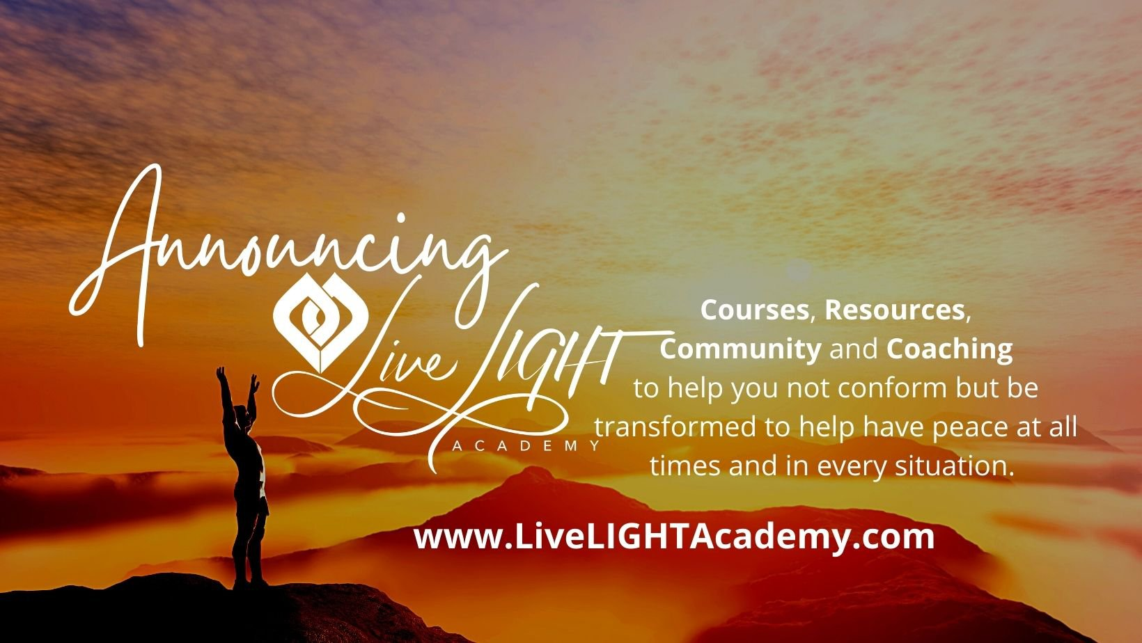 Announcing the NEW Live LIGHT Academy Courses via @trevorlund