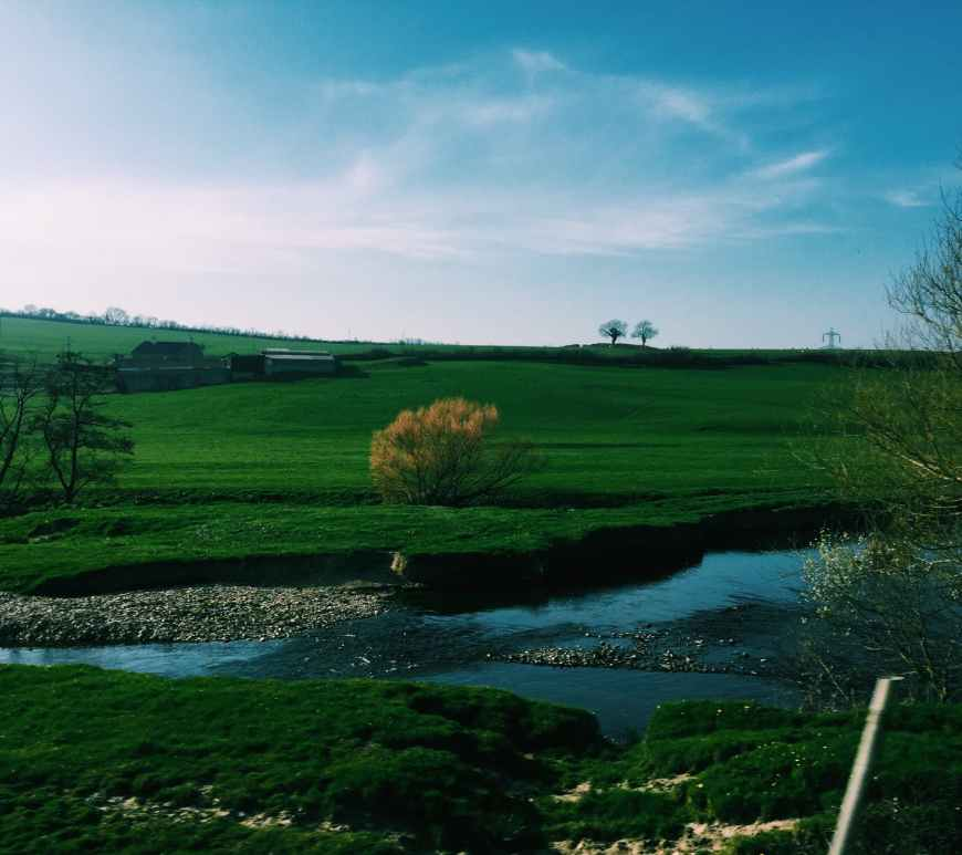 grassy fields near river and trees in countryside