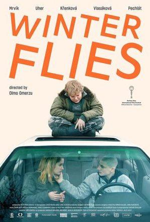 winter flies poster