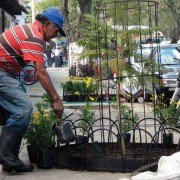 Project gardener José Benigno Obando keeps the gardens watered and maintained.