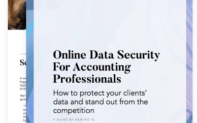 Online Data Security for Accounting Professionals