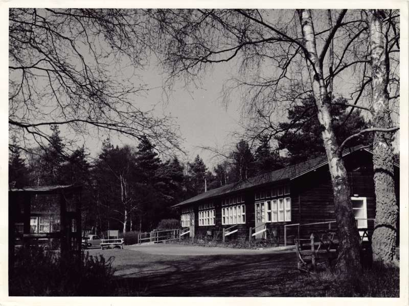 Exterior view of wooden chalet huts at Hydon Hill