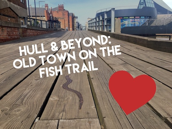Hull & Beyond: Old Town on the Fish Trail