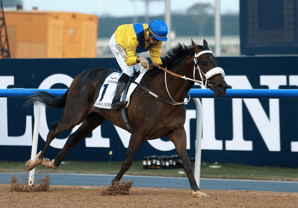 Mubtaahij_kentucky_derby