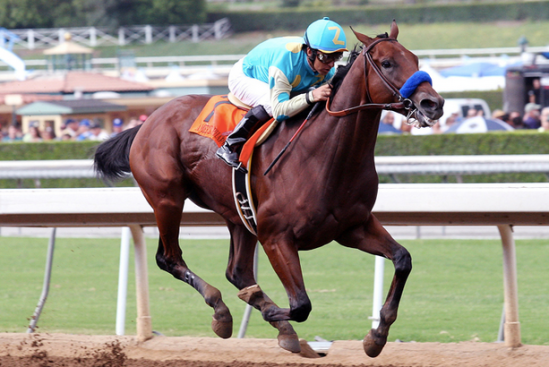 pronosticos preakness stakes 2015