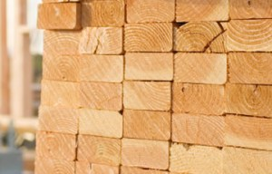 Category Timber