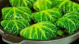 vegeatarische Wirsing-Rouladen