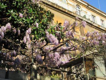 Via Margutta, Roma