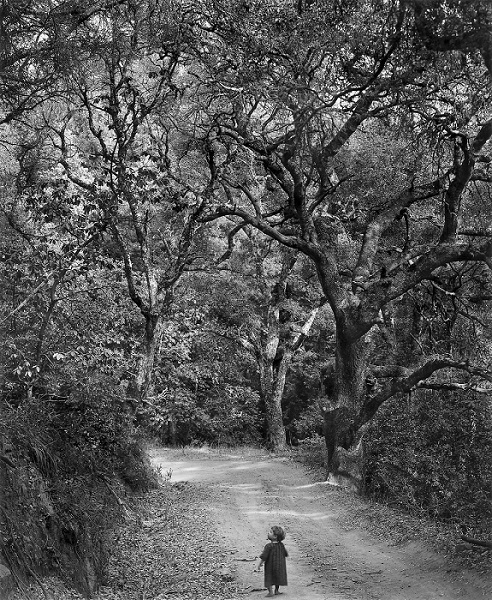 Child on the Forest Road By Wynn Bullock 1958 © Bullock Family Photography, LLC