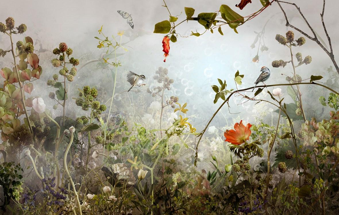 Sanctum by Ysabel Le May