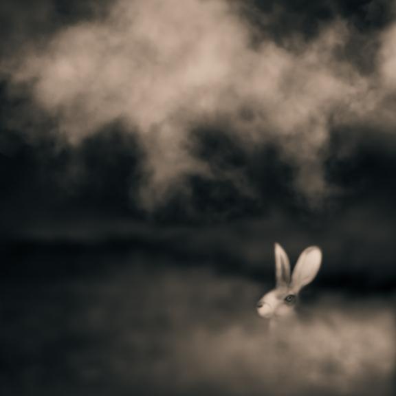 Tailsman © Tami Bone