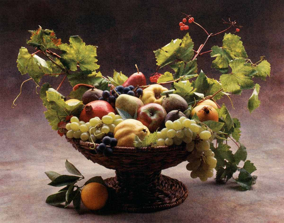 Caravaggio Harvest by Cy DeCosse